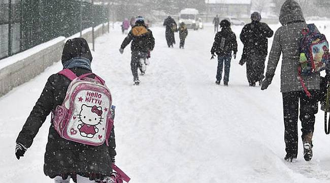 Malatya'da Kar Yağışı Nedeniyle Okullar Tatil Edildi