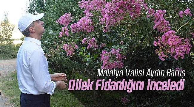 Malatya Valisi Baruş Dilek Fidanlığını İnceledi