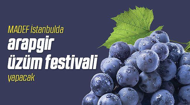 MADEF İstanbul'da Arapgir Üzüm Festivali Yapacak